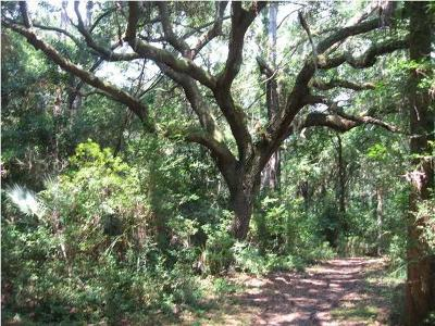 Residential Lots & Land For Sale: 2856 Capn Sams Road
