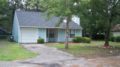 Single Family Home For Sale: 134 Tabby Creek Circle