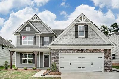 Moncks Corner Single Family Home For Sale: 125 Lakelyn Road