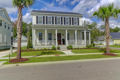 Mount Pleasant Single Family Home For Sale: 3590 Backshore Drive