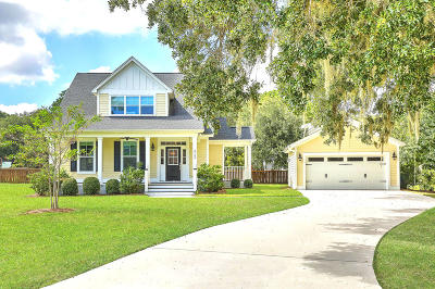 Johns Island Single Family Home For Sale: 3153 Fosters Glenn Drive