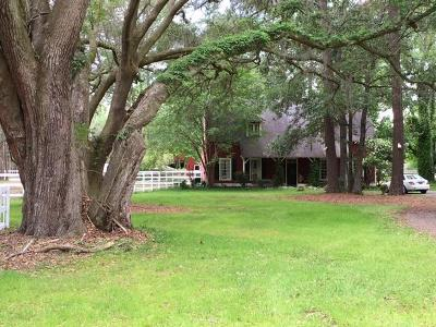 Johns Island Single Family Home For Sale: 2194 River Road