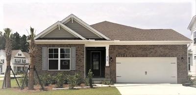 Single Family Home For Sale: 215 Seaworthy Avenue