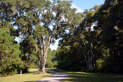 Edisto Island SC Residential Lots & Land For Sale: $48,500
