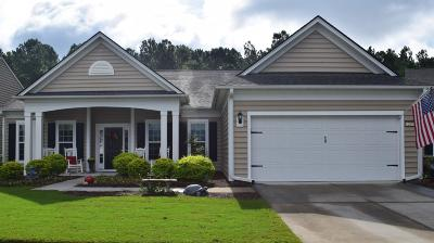 Summerville Single Family Home For Sale: 269 Waterfront Park Drive