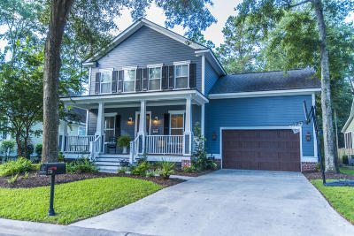 Charleston Single Family Home Contingent: 735 Canopy Cove