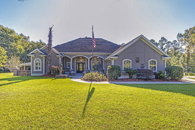 Moncks Corner Single Family Home For Sale: 1150 Old Highway 52