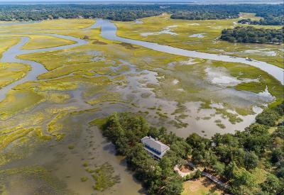 Charleston Single Family Home For Sale: 712 Ellis Oak Drive