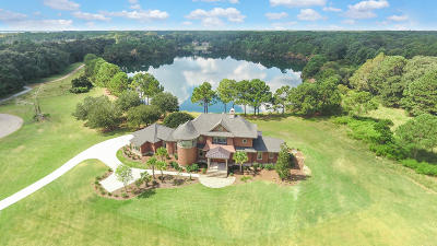 Johns Island Single Family Home For Sale: 3783 Gnarled Oaks Lane