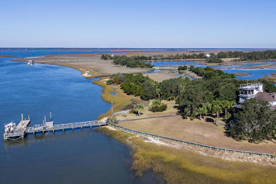 Dewees Island Single Family Home For Sale: 171 Dewees Inlet Drive