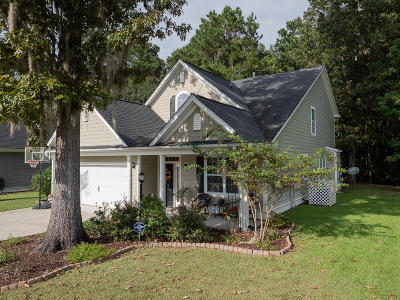 North Charleston Single Family Home For Sale: 8528 Sentry Circle