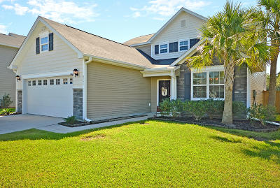 Carolina Bay Single Family Home For Sale: 3141 Gallberry Street