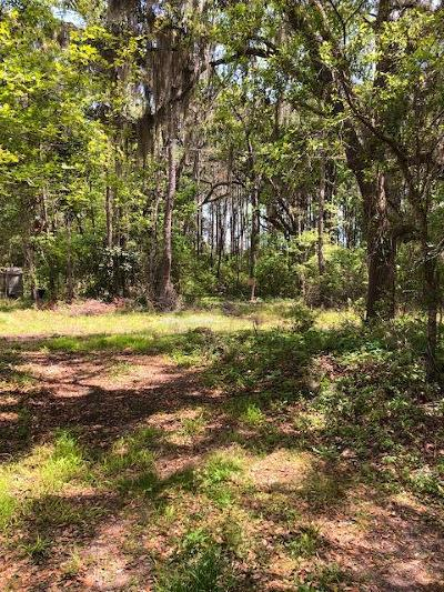 Edisto Island SC Residential Lots & Land For Sale: $29,900