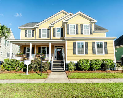 Mount Pleasant Single Family Home For Sale: 2145 Sandy Point Lane