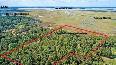 Charleston County Residential Lots & Land For Sale: Evelina Street