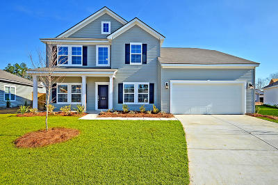 Goose Creek Single Family Home Contingent: 119 Levis Song Court