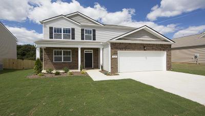 Moncks Corner Single Family Home For Sale: 635 Woolum Drive