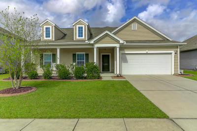 Goose Creek Single Family Home For Sale: 503 Nandina Drive
