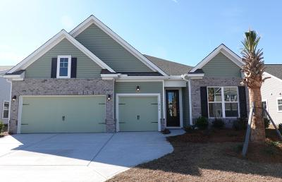 Johns Island Single Family Home For Sale: 1216 Hammrick Lane
