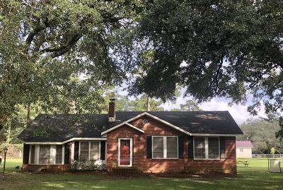 Walterboro Single Family Home For Sale: 205 Elmwood Road