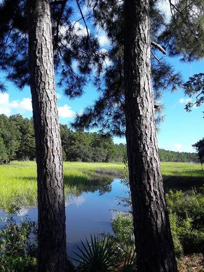 Charleston Residential Lots & Land For Sale: 1056 Bradbury Lane