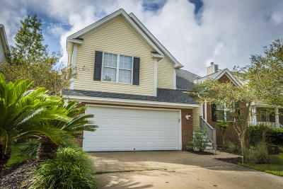 Charleston Single Family Home For Sale: 313 Clayton Drive