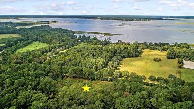 Wadmalaw Island Residential Lots & Land For Sale: 42 Josie Ridge Road