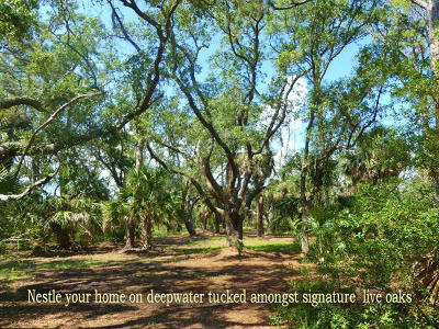 Edisto Island SC Residential Lots & Land For Sale: $249,000