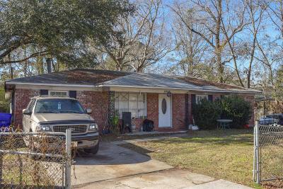 North Charleston Single Family Home For Sale: 6969 Vista Court