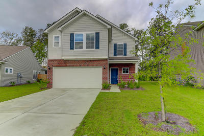 Goose Creek Single Family Home For Sale: 140 Chaste Tree Circle