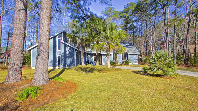 Goose Creek Single Family Home For Sale: 104 Castleway Lane