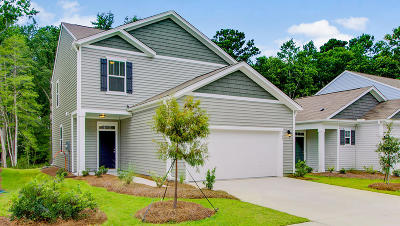 Berkeley County, Charleston County, Colleton County, Dorchester County Single Family Home For Sale: 602 Wayton Circle