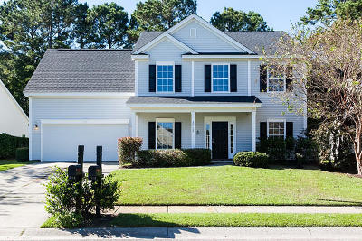 Mount Pleasant SC Single Family Home For Sale: $399,900