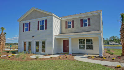 Berkeley County, Charleston County, Colleton County, Dorchester County Single Family Home For Sale: 209 Goshen Road