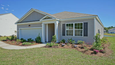 Berkeley County, Charleston County, Colleton County, Dorchester County Single Family Home For Sale: 207 Goshen Road