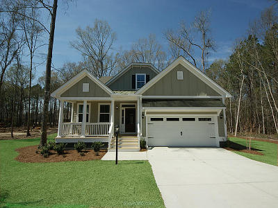 Mount Pleasant SC Single Family Home For Sale: $519,115