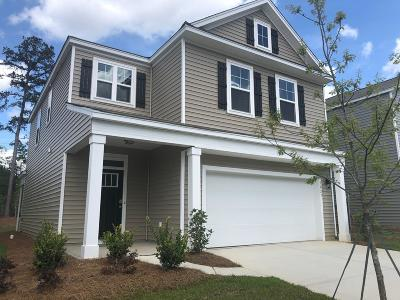 Berkeley County, Charleston County, Colleton County, Dorchester County Single Family Home For Sale: 5027 Paddy Field Way
