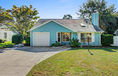 Mount Pleasant Single Family Home For Sale: 1552 E Crossing Lane