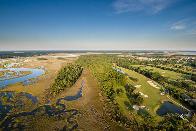 Berkeley County, Charleston County Residential Lots & Land For Sale: 236 Brailsford Street