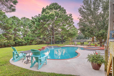 Single Family Home For Sale: 1377 Black River Drive