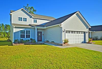Charleston, Mount Pleasant, North Charleston, Summerville, Goose Creek, Moncks Corner Single Family Home For Sale: 302 Decatur Drive