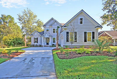 Single Family Home For Sale: 425 Shadowmoss Parkway
