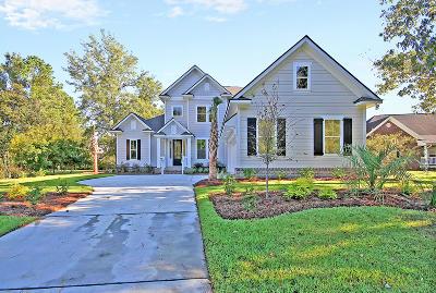 Charleston, Mount Pleasant, North Charleston, Summerville, Goose Creek, Moncks Corner Single Family Home For Sale: 425 Shadowmoss Parkway