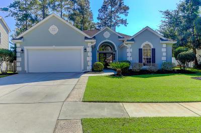 Charleston, Mount Pleasant, North Charleston, Summerville, Goose Creek, Moncks Corner Single Family Home For Sale: 3267 John Bartram Place