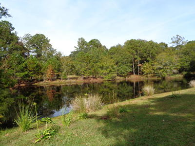 Awendaw Residential Lots & Land Contingent: 9 Awendaw Lakes Boulevard