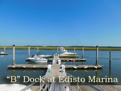Edisto Beach, Edisto Island Residential Lots & Land For Sale: 3702 Docksite Road #B6