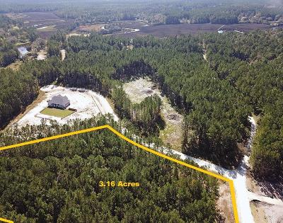 Awendaw Residential Lots & Land For Sale: 7530 Seattle Slew Court
