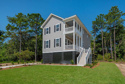 Single Family Home For Sale: 117 Martins Point Drive