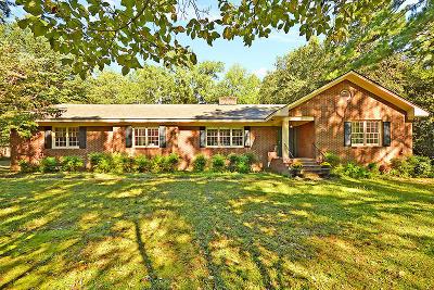 Summerville Single Family Home For Sale: 113 W Johnston St