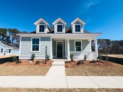 Summerville Single Family Home For Sale: 219 Angelica Avenue